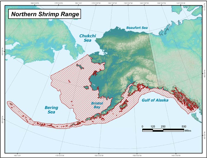 Range map of Northern Shrimp in Alaska