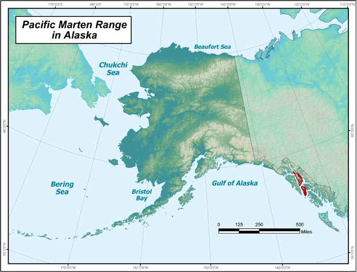 Range map of Pacific Marten in Alaska