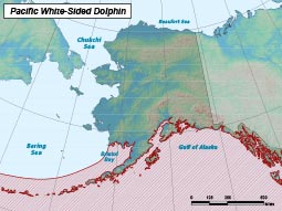 Pacific White-sided Dolphin range map