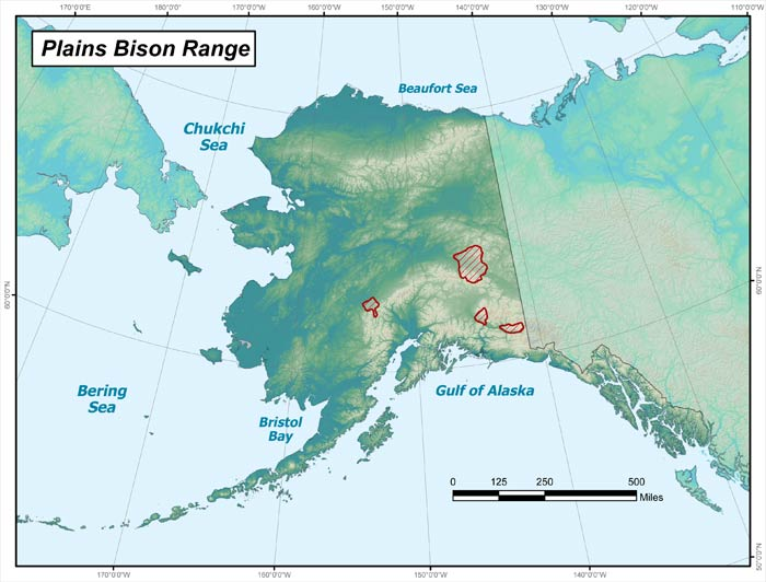 plains bison range map