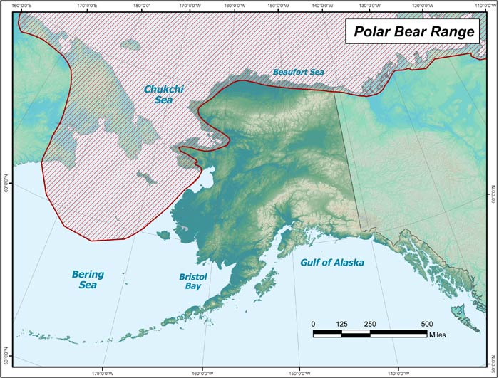 Range map of Polar Bear in Alaska