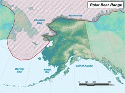 Polar Bear range map