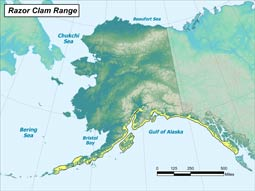 Razor Clam range map
