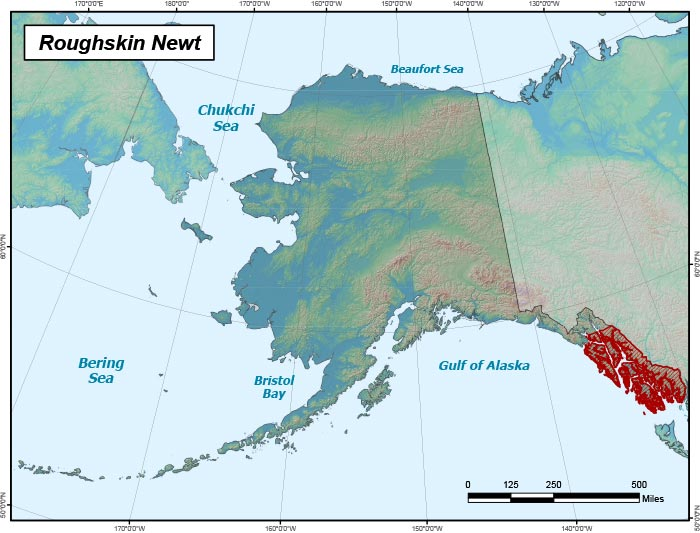 Range map of Roughskin Newt in Alaska