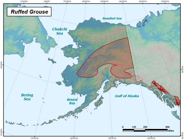 Range map of Ruffed Grouse in Alaska
