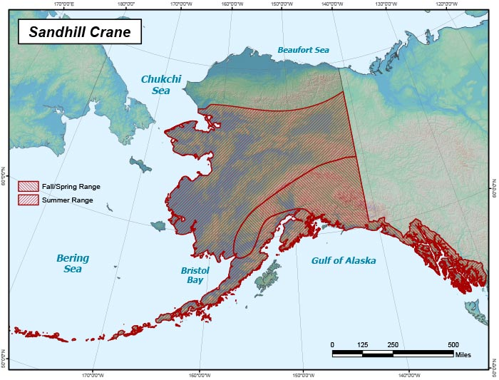Range map of Sandhill Crane in Alaska