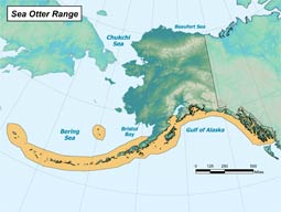 Northern Sea Otter range map