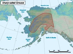 Sharp-tailed Grouse range map