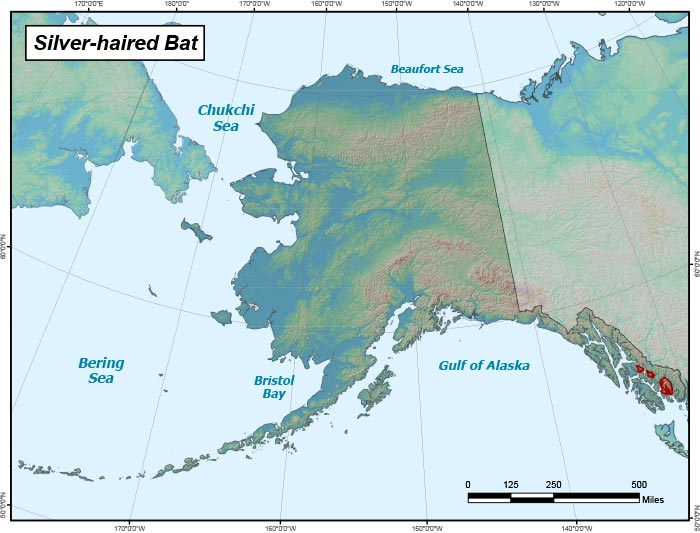 Range map of Silver-haired Bat in Alaska