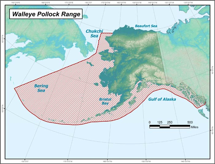 Range map of Walleye Pollock in Alaska