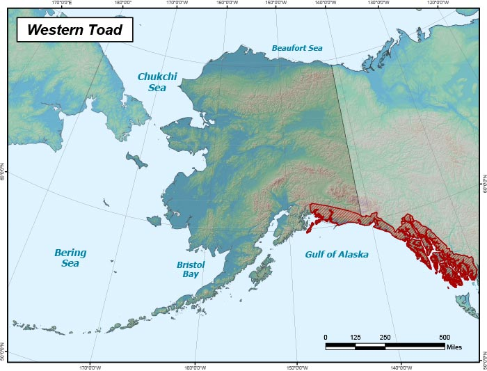 Range map of Western Toad in Alaska