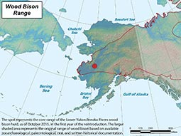 Wood Bison range map
