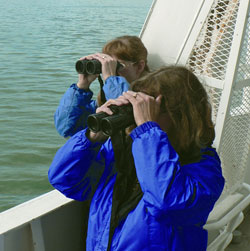 Two people on ferry looking through their binoculars