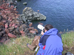 Photographer at Round Island