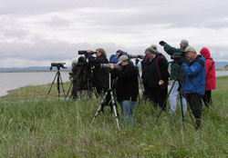 Group of people with binoculars