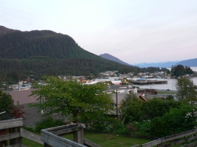 photo of Downtown Wrangell area wildlife