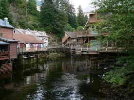 photo of Downtown Ketchikan area wildlife