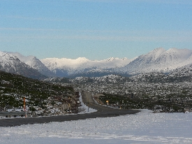 photo of Klondike Highway area wildlife