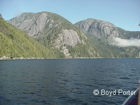 photo of Misty Fjords National Monument area wildlife