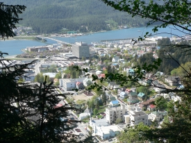 photo of Downtown Juneau area wildlife
