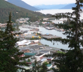photo of Wrangell area wildlife