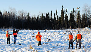 Five hunters outdoors, two of which are aiming their rifles at a pheasant