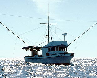 Commercial Salmon Fisheries, Alaska Department of Fish and Game