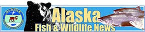 link to the Alaska Fish and Wildlife News