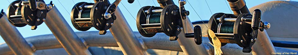 reels and rods ready to fish - photo courtesy of Ken Marsh
