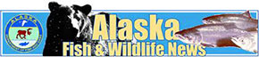 Alaska Fish and Wildlife News
