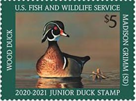 2019 Junior Duck Stamp