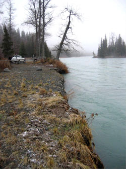 Cost Share Program Kenai River Project Alaska