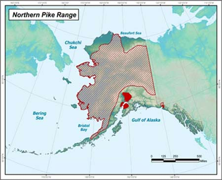 Map showing portions of Alaska where pike are invasive