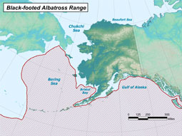 Black-footed Albatross range map