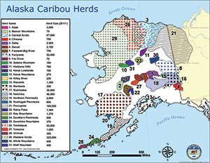 Map of 32 caribou herds