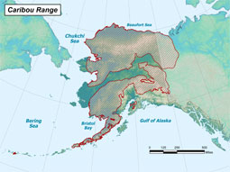Caribou range map