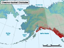 Chestnut-backed Chickadee range map