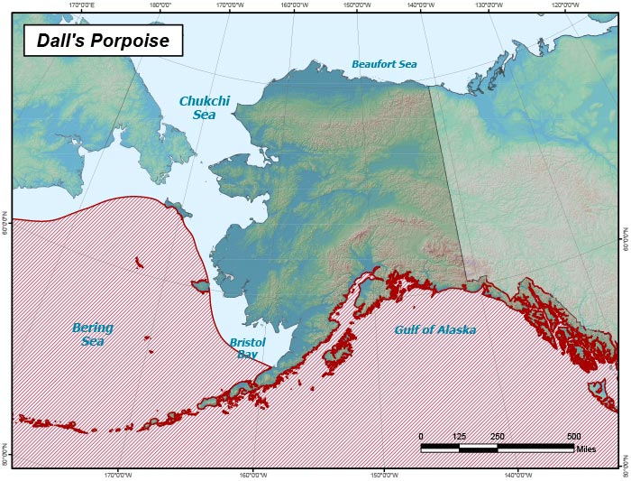 Range map of Dall's Porpoise in Alaska