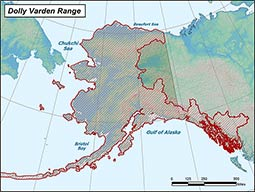 Dolly Varden range map