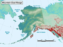 Mountain Goat range map