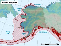 Harbor Porpoise range map