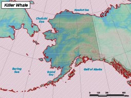 Killer Whale range map