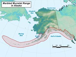 Marbled Murrelet range map