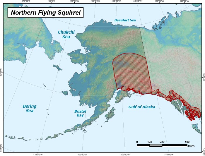 Range map of Northern Flying Squirrel in Alaska