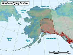 Northern Flying Squirrel range map