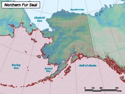 Northern Fur Seal range map