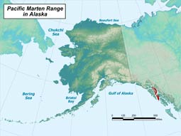 Pacific Marten range map