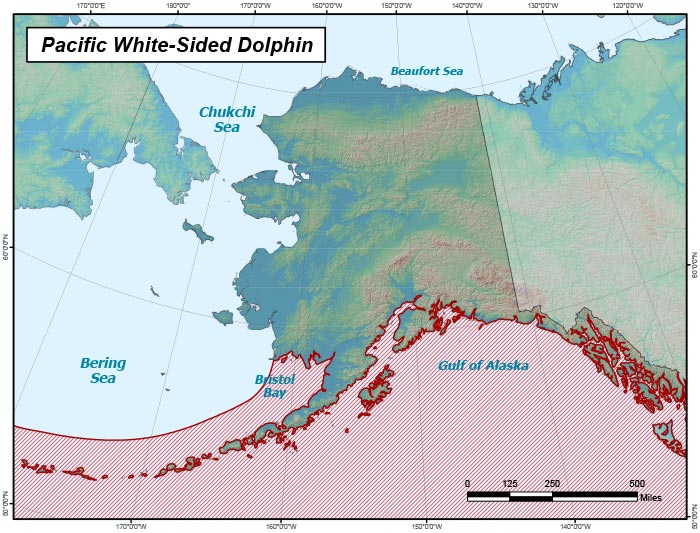 Range map of Pacific White-sided Dolphin in Alaska