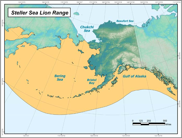 Range map of Steller Sea Lion in Alaska