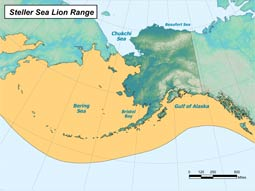 Steller Sea Lion range map